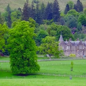 The American Scottish Gaelic Society